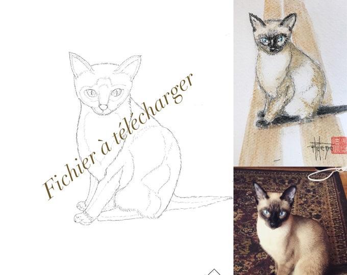 le chaton mignon, à colorier. Fichier à télécharger