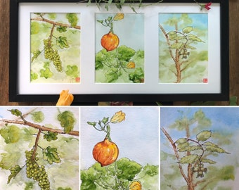 Triptych of watercolours, the autumn vegetable garden.  Hand-painted originals