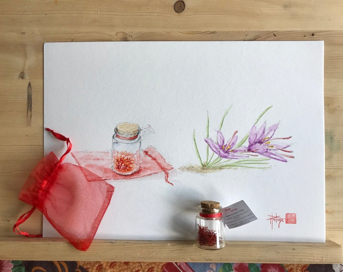 Watercolor, the saffron of the Ardennes. Original, hand painted
