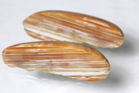Water Banded Agate Polished Pair - Hand cut and polished!  Glossy 3.5 inch!