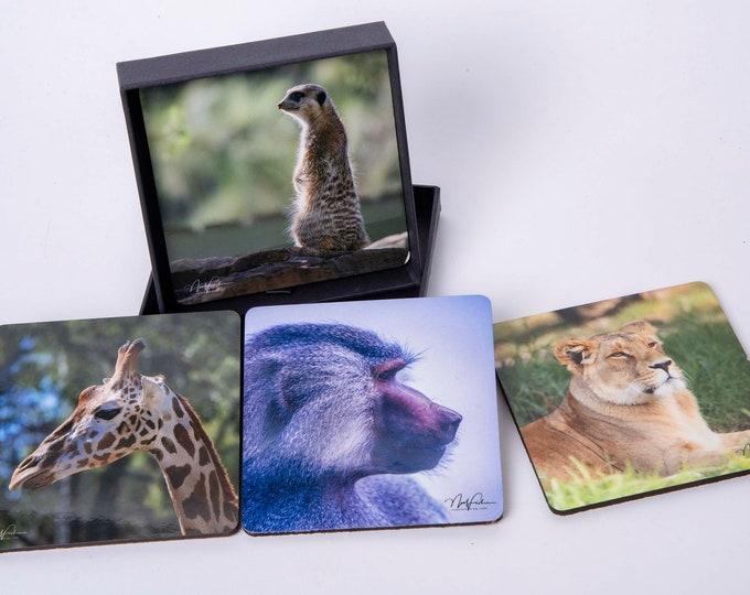 African Animals. set of 4 Cork Coasters.