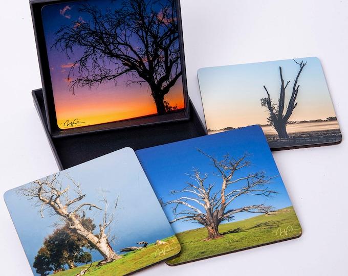 Old Trees. Set of 4 Coasters