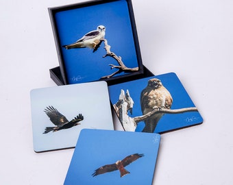 Birds of Prey. set of 4 cork coasters