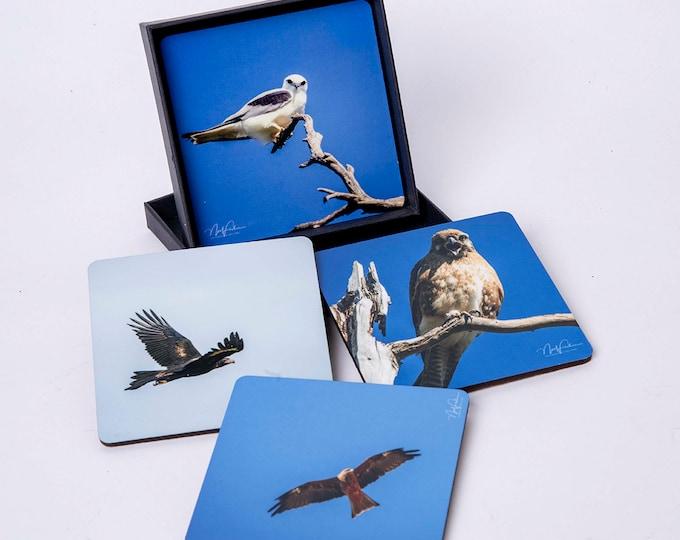 Birds of Prey. set of 4 cork coasters