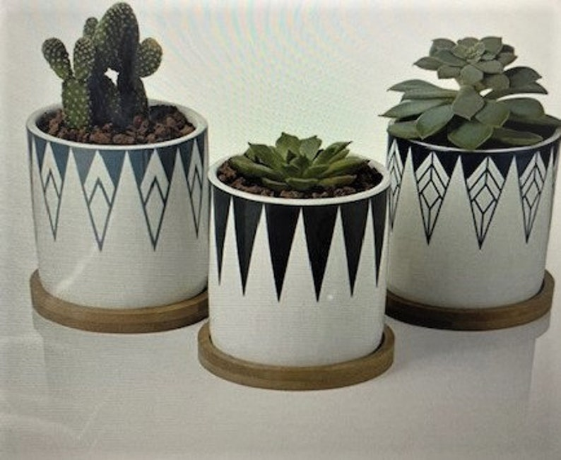 small succulent pots bamboo tray Set of