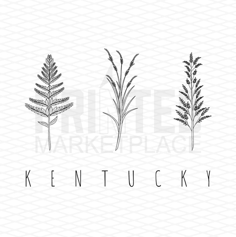 Kentucky State Floral Tee Shirt Or Hoodie By Lily and Grace Adults