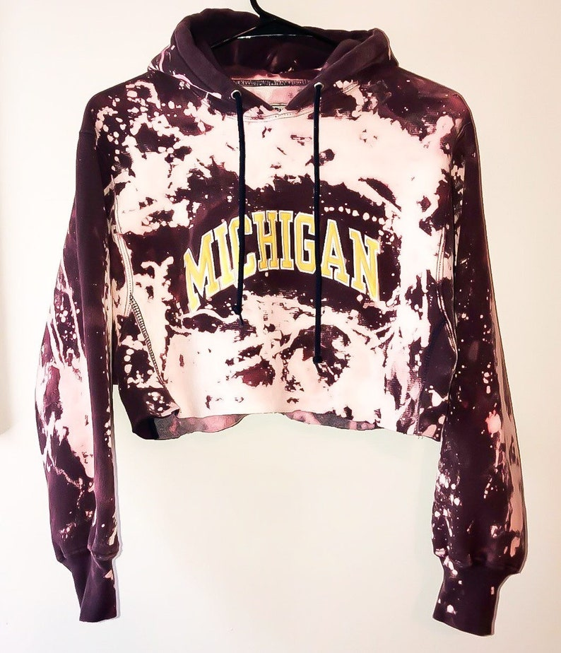 Michigan State Cropped Hoodie