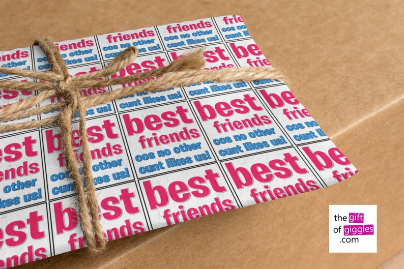 Inappropriately Funny Rude Offensive Swear Words Best Friends Cunt Gift Wrapping Paper