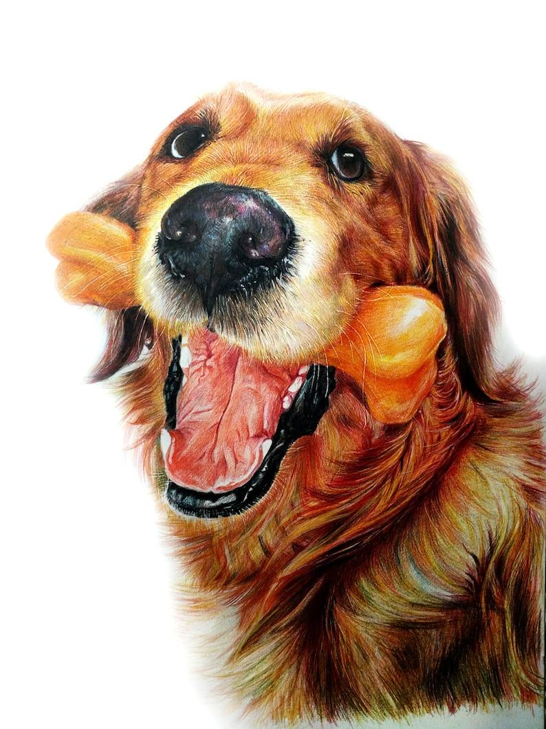 Custom Pet Portrait Painting Funny Dog Colored Pencils Drawing Memorial Artwork