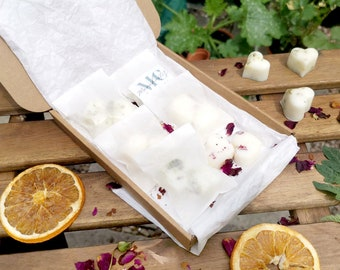 Soy Wax Melts Gift Box - Botanical Wax Melts Gift Set - Natural Wax Melts Sample Box - Letterbox Gifts For Her - Housewarming Gift For Mum