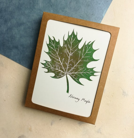 Boxed set of 6 handprinted linocut Norway Maple cards