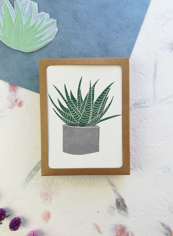 Boxed set of 6 - Linocut haworthia succulent cards