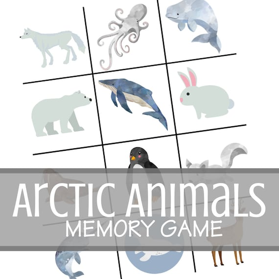 Arctic Animal Theme Memory Game