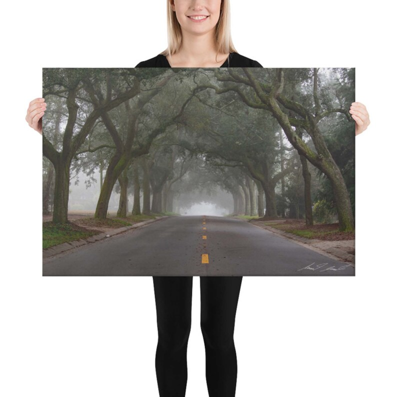 Into The Mist N 12th Ave. Pensacola Florida Canvas Wall Art image 0