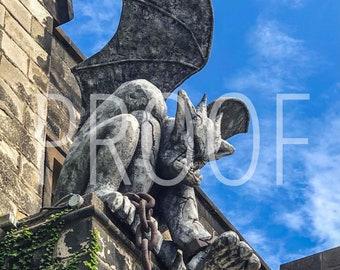 Philadelphia Eastern State Penn Gargoyle 5x7 Matted Photo