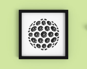 Lime - Minimalist Black and White Fine Art Print - Limited Edition 2/250 - Digital Photography