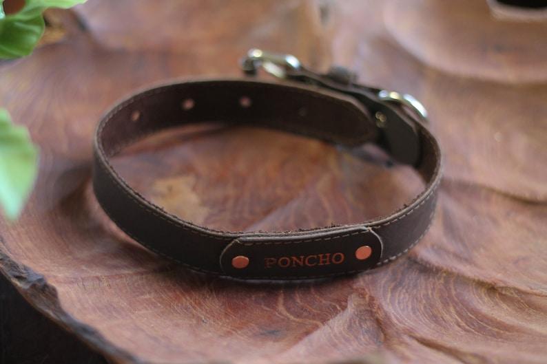 Genuine Leather Collar Dog Collar Handmade Collar Gift for Dog Personalized Dog Collar Premium Leather Collar Engraved Leather Collar