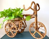 Large Rattan Tricycle Planter
