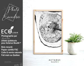Photographie dans cadre bois recyclé, photographie tranche de bois, impression d'art minimaliste, impression décors scandinave