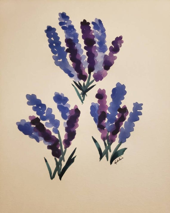 Lavender bunches watercolor