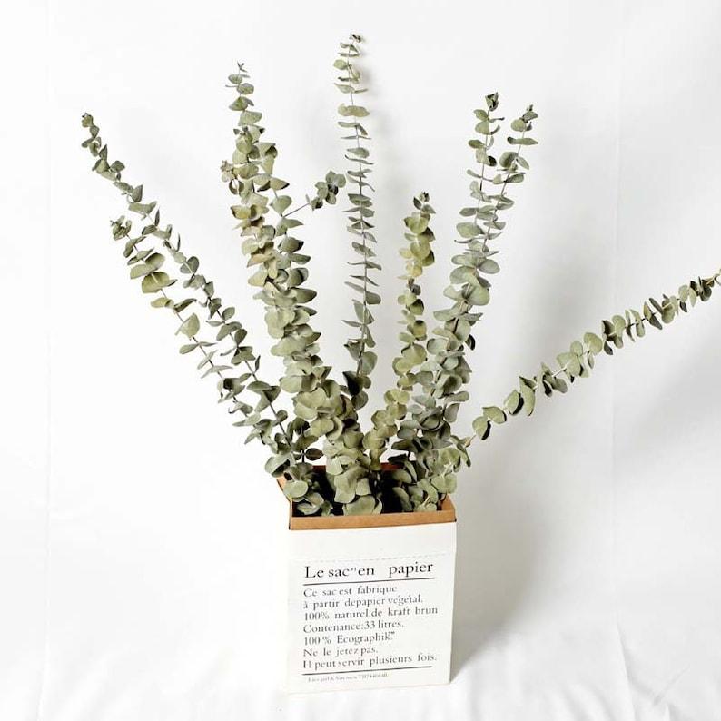 rustic flower bouquets,Dry eucalyptus leaves natural home decor vase filler Dried flower bouquet dried flowers