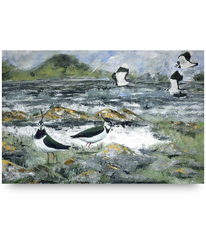 March Arrival. Acrylic Canvas painting. Isle of Harris. Bird image 0