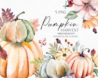 Watercolor pumpkin clipart, Fall pumpkin png, Garden icons, Farmhouse clipart for baby shower, harvest festival, plant mom gift 065