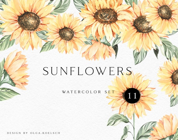 Boho sunflower logo png Watercolor sunflower wreath clipart Summer boho yellow floral watercolor png