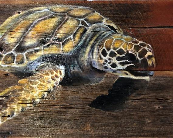 "Sea Turtle 22.5""x42"""