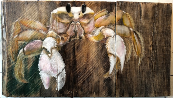 "Ghost Crab 31"" x 17.5"""