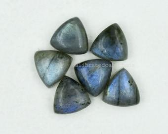 15mm 20 Pcs Labradorite Faceted Trillion Shape Loose Stones