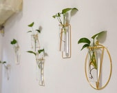Wall Hydroponic Vase, Hanging Wall Planter, Wall Vase, Wall Hanging Planter Indoor, Glass Vase,Plant Cuttings Glass Planter,Propagation Vase