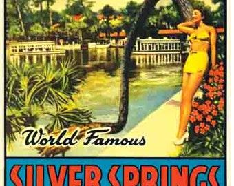 Rare Vintage Circa 1950/'s White on Purple Glass Bottom Boat Picture Felt Large Size Pennant Souvenir Florida Silver Springs