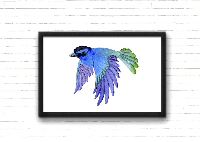 Indigo Bunting Blue Wild Bird Original Art Print 8x10 Matted to 11x14