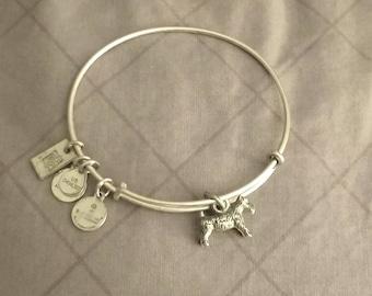 Alex and Ani CATTAIL Charm Bangle Bracelet New//Tags BOX Sacred Garden RARE