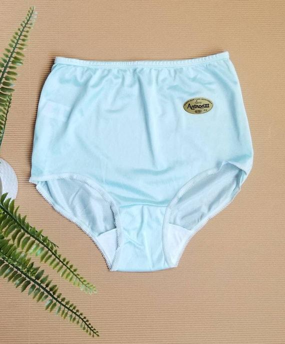 Retro Panties, High Waist Underwear, Lingerie, Kn… - image 2