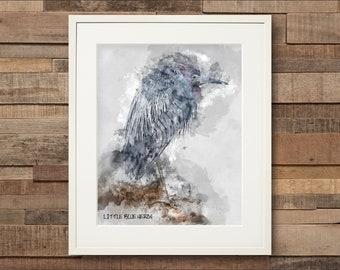 Watercolor Little Blue Heron Fine Art Print