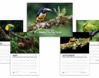 2022 Images of the Rain Forest Wall Calendar