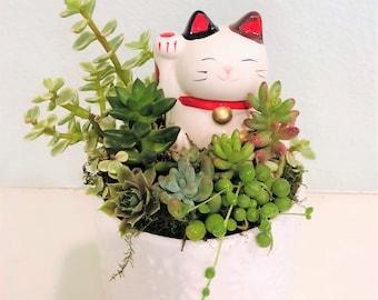 animal planter cute planter Maneki neko crazy cat lady lucky cat indoor planter Succulent Planter birthday gift Cat lover