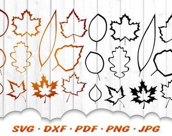 Fall Leaves Outline SVG Bundle - Fall Svg Cut Files For Cricut - Leaves SVG Bundle - Fall Leaf SVG  - Fall Scrapbook Leaves Svg Clipart Dxf
