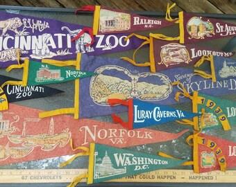 Cincinnati zoo art | Etsy on