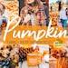 Abigail Hunt reviewed 9 Pumpkin presets Mobile presets Fall presets Fall season Vibrant Tan Sharp Lifestyle Presets Blogger Presets Halloween presets Warm Orange