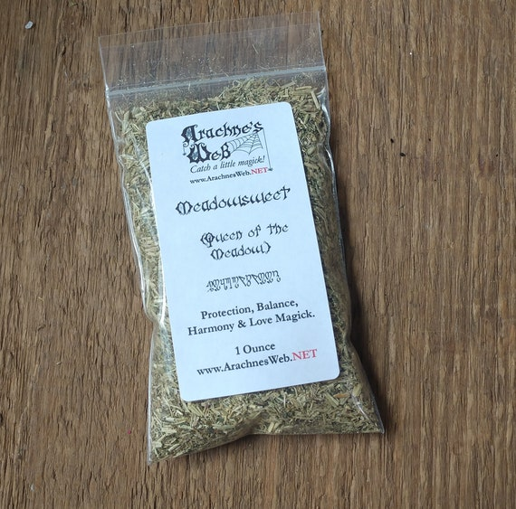 """Meadowsweet, Witches Meadowsweet, """"Queen of the Meadow"""", Meadowsweet for Magic, Meadowsweet for Witchcraft"""