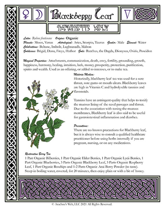 Blackberry Leaf Book of Shadows Page, Grimoire Art Page, Witch's Herbal Page for Blackberry Leaf
