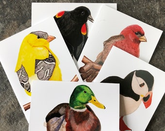 Assorted Bird Note Cards