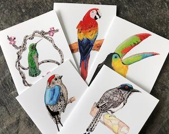 Costa Rican Bird Note Cards