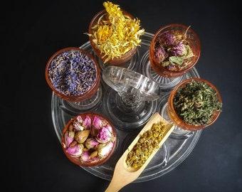 Sabbat Herb Sampler Apothecary Starter Kit Herbalism Incense Wicca Ritual Pagan Smudge Medicinal Herb Chakra Reiki Wheel of the Year Magic
