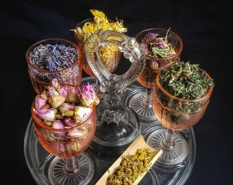 Money Spell Herb Sampler Apothecary Starter Kit Herbalism Incense Wicca Ritual Pagan Smudge Medicinal Herbs Chakra Reiki Candle Soap Resin