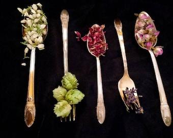 Apothecary Starter Kit Dried Herb Sampler Herbalism Ritual Wild Medicinal Chakra Organic Wildcrafted Healing Herbal Set Survivalist Learning