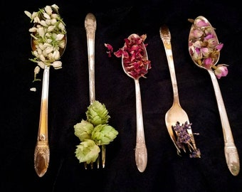 40 HERBS Apothecary Starter Kit Dried Herb Sampler Herbalism Ritual Medicinal Chakra Organic Wildcrafted Healing Herbal Set Loose Incense
